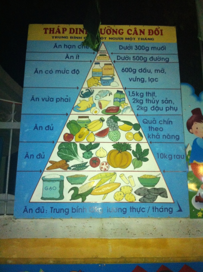 I couldn't handle my excitmement when I noticed the Vietnamese food pyramid outside a school in Hoi An - definitely got some strange looks whilst photographing it! I think it compares pretty well to our guidelines too.