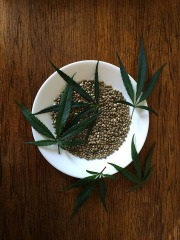 hemp-seeds-1418322_960_720